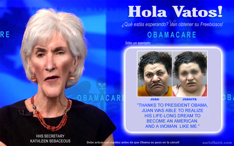 obamacare and immigration