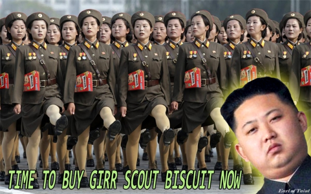 nork scouts1