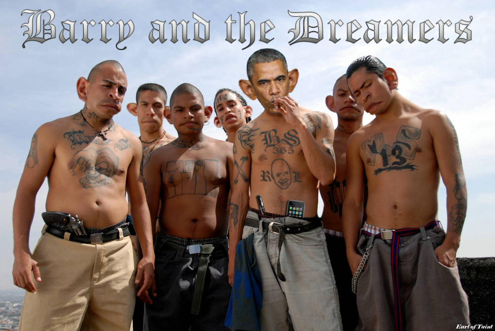 barry and the dreamers
