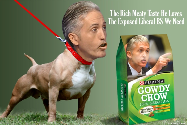 pit bull gowdy