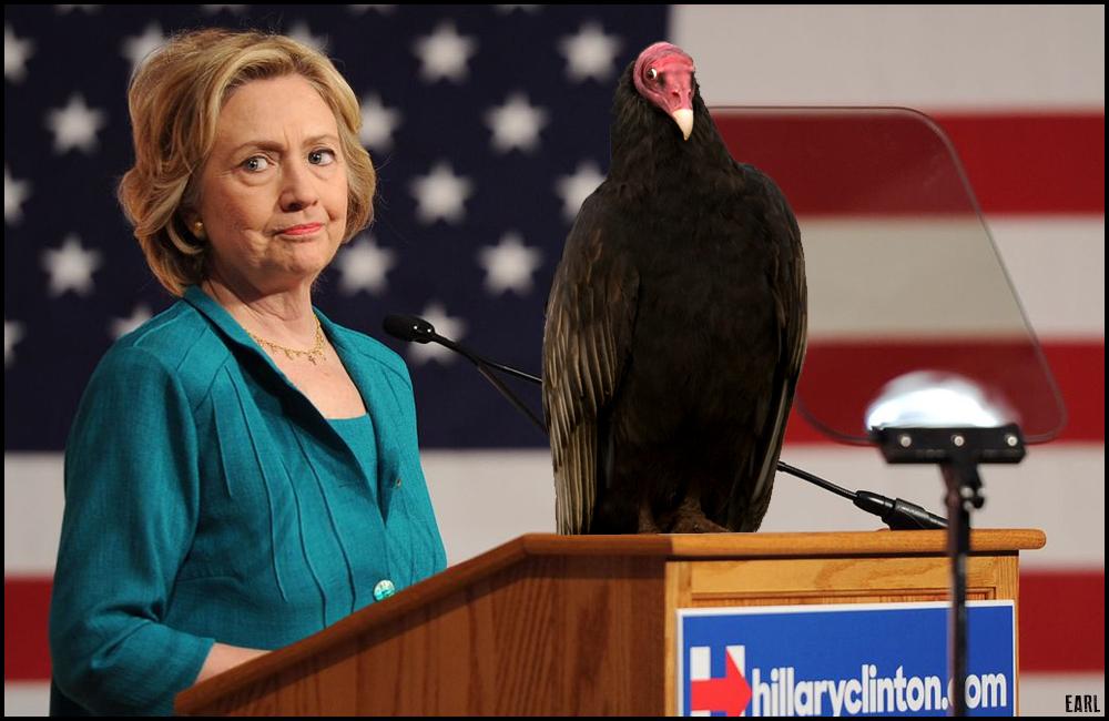 hillary bird