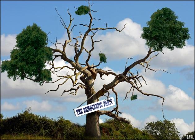 dem-tree