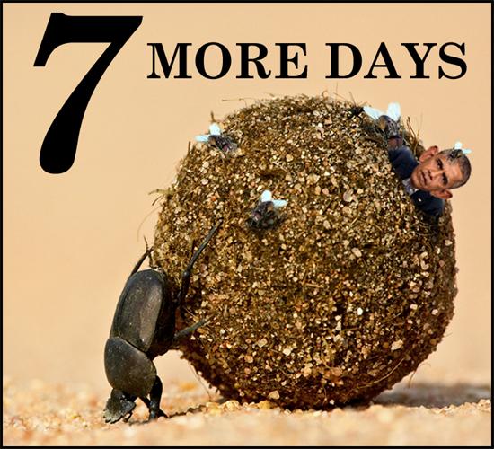 7-days-dung