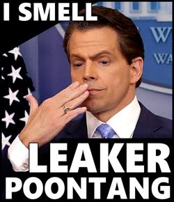 leakypoon