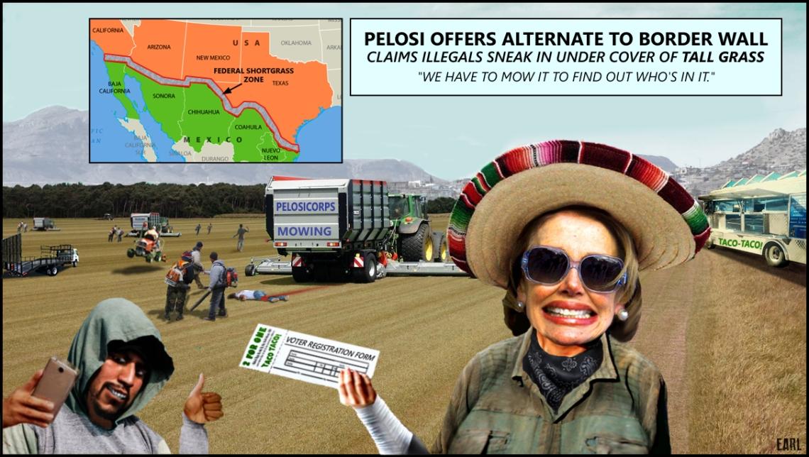Pelosi Solution
