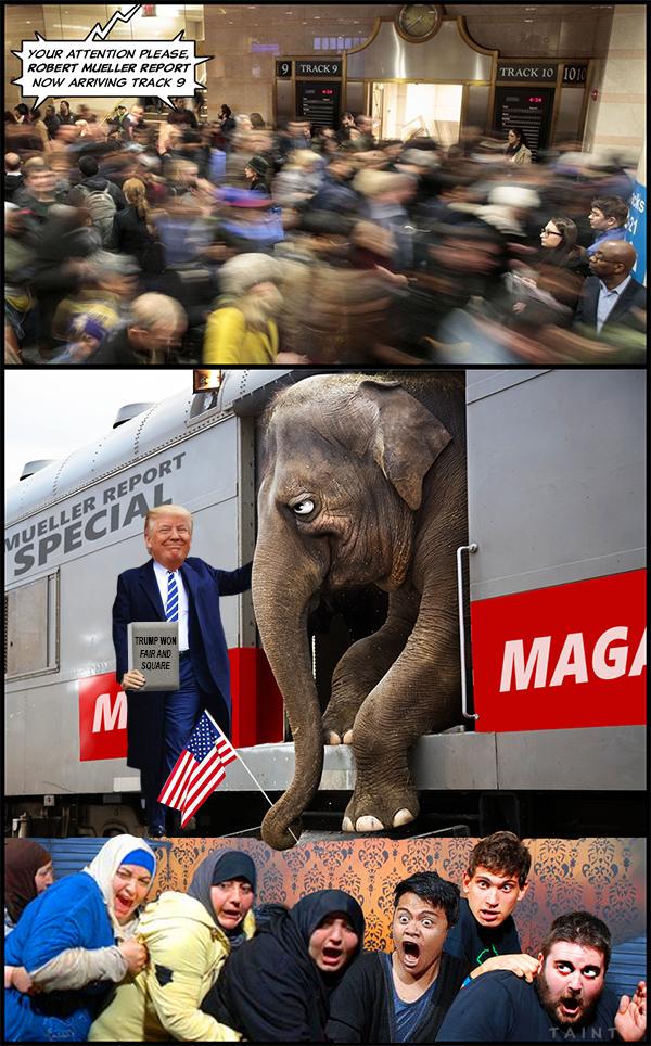 mueller-train.png