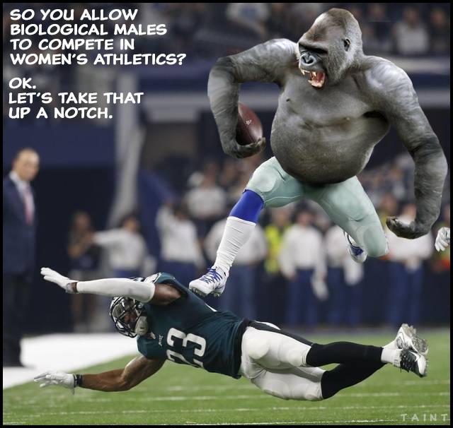 gorillaball