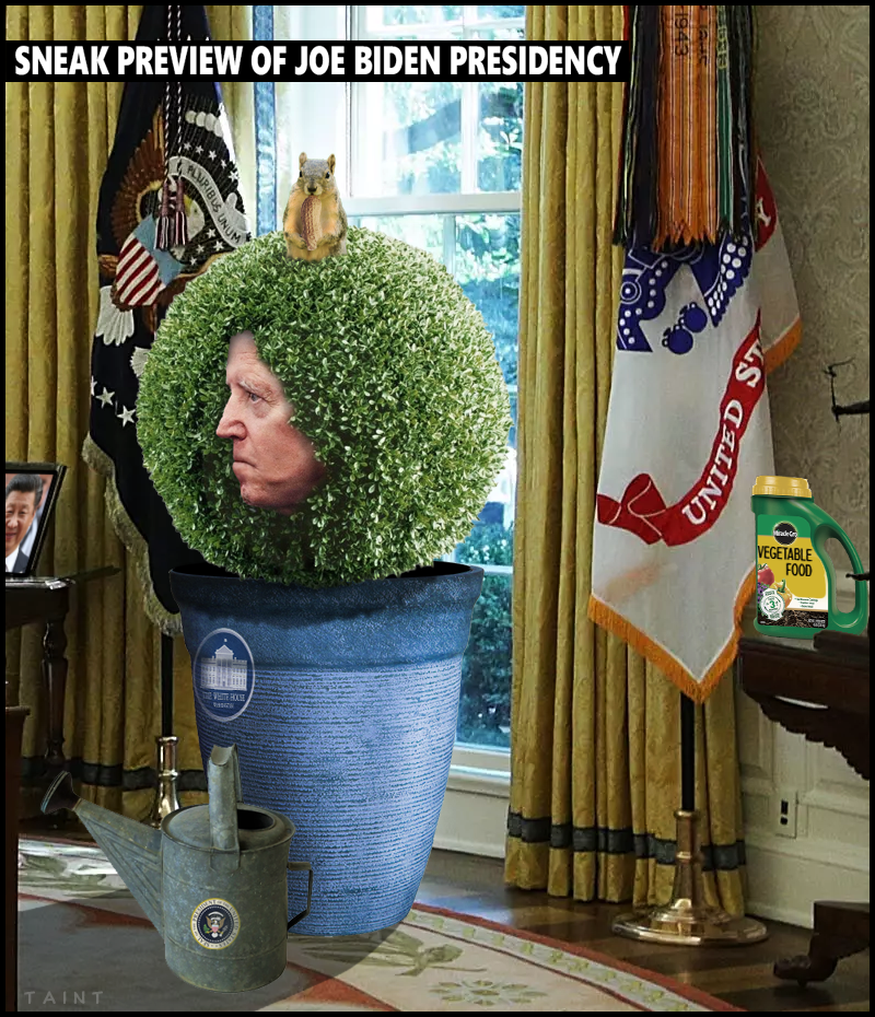 potted-joe-1.png